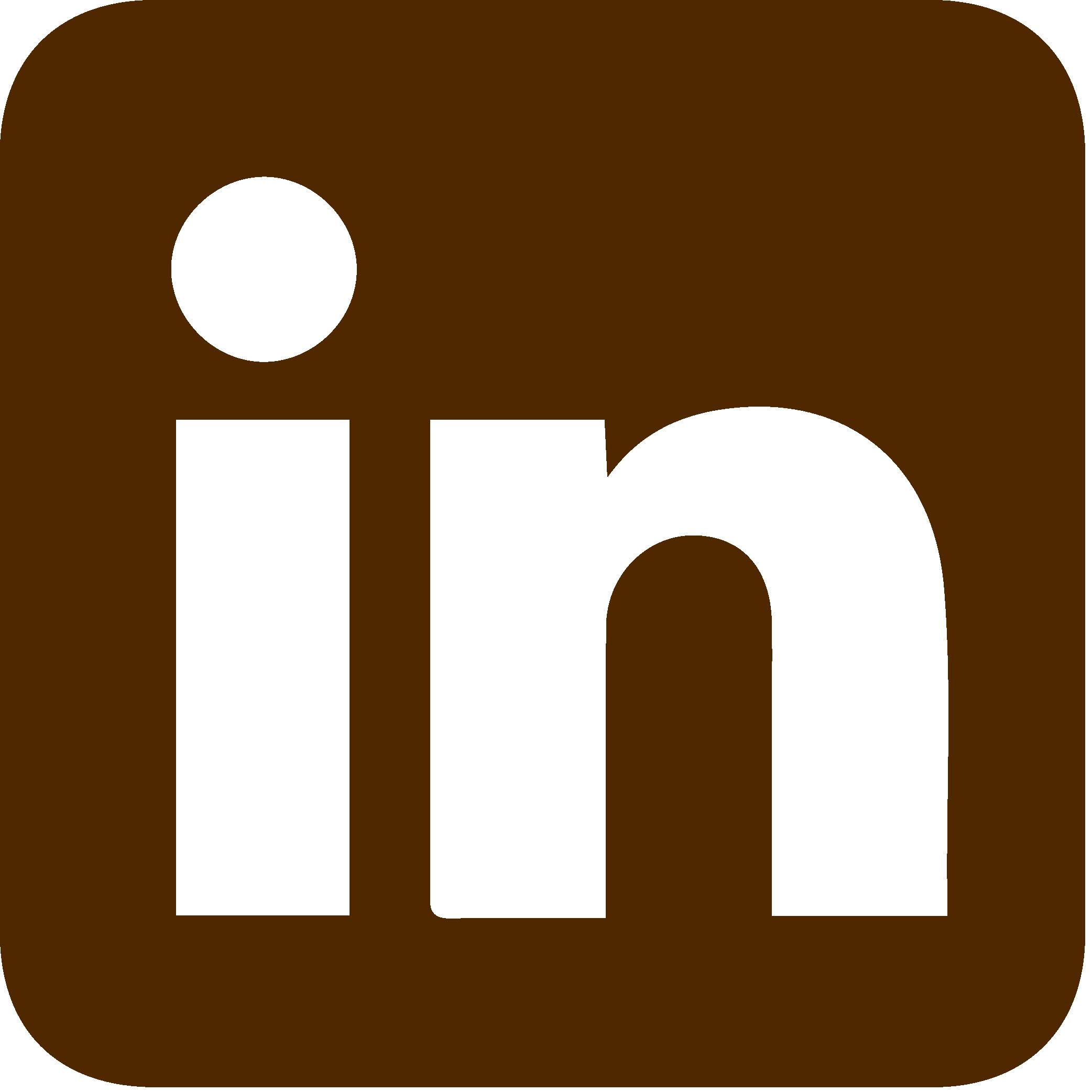 LinkedIn Icon-01
